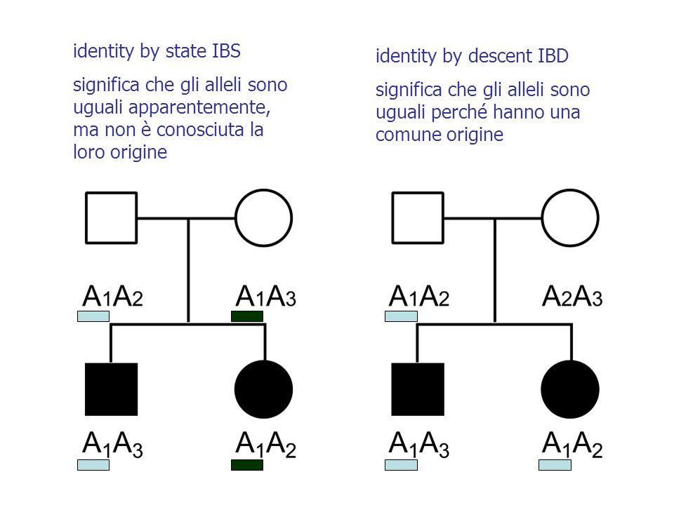 identity by state IBS significa che gli alleli sono uguali apparentemente, ma non è conosciuta la loro origine identity by descent IBD significa che gli alleli sono uguali perché hanno una comune origine