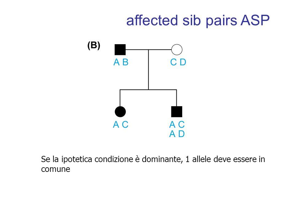 Se la ipotetica condizione è dominante, 1 allele deve essere in comune affected sib pairs ASP