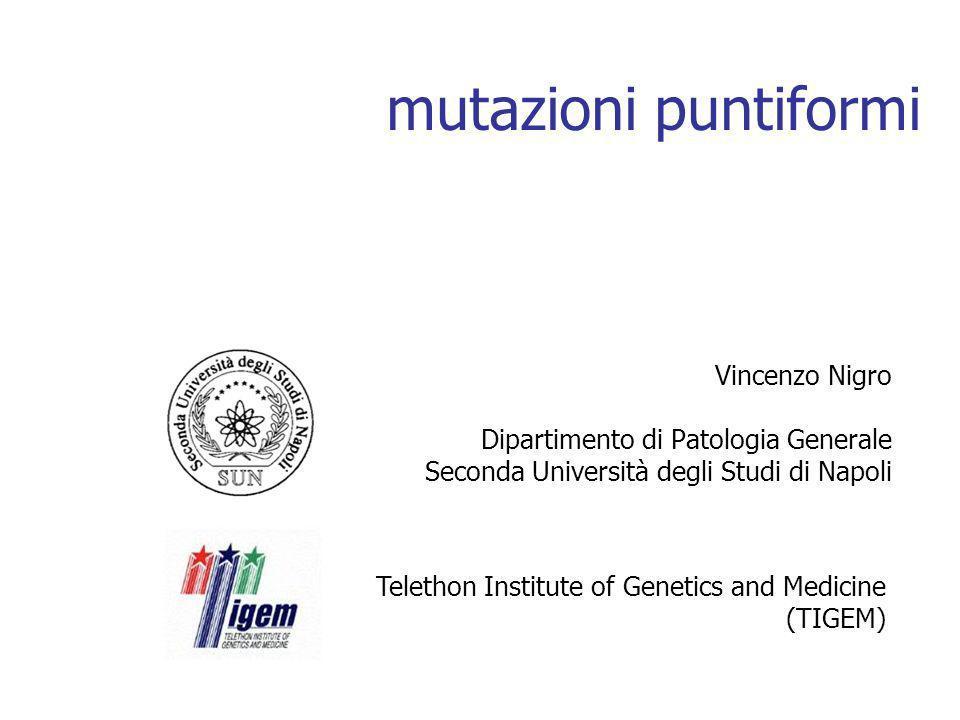 mutazioni puntiformi Vincenzo Nigro Dipartimento di Patologia Generale Seconda Università degli Studi di Napoli Telethon Institute of Genetics and Medicine (TIGEM)