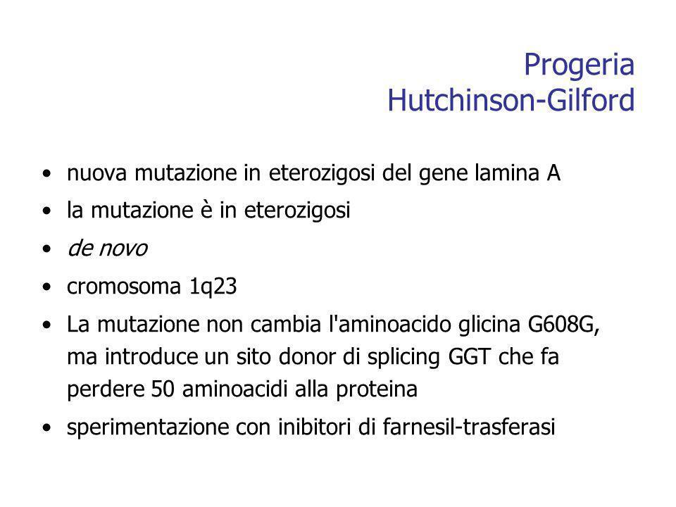 Progeria Hutchinson-Gilford nuova mutazione in eterozigosi del gene lamina A la mutazione è in eterozigosi de novo cromosoma 1q23 La mutazione non cambia l aminoacido glicina G608G, ma introduce un sito donor di splicing GGT che fa perdere 50 aminoacidi alla proteina sperimentazione con inibitori di farnesil-trasferasi
