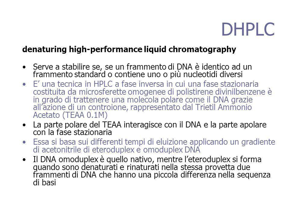 DHPLC denaturing high-performance liquid chromatography Serve a stabilire se, se un frammento di DNA è identico ad un frammento standard o contiene uno o più nucleotidi diversi E una tecnica in HPLC a fase inversa in cui una fase stazionaria costituita da microsferette omogenee di polistirene divinilbenzene è in grado di trattenere una molecola polare come il DNA grazie allazione di un controione, rappresentato dal Trietil Ammonio Acetato (TEAA 0.1M) La parte polare del TEAA interagisce con il DNA e la parte apolare con la fase stazionaria Essa si basa sui differenti tempi di eluizione applicando un gradiente di acetonitrile di eteroduplex e omoduplex DNA Il DNA omoduplex è quello nativo, mentre leteroduplex si forma quando sono denaturati e rinaturati nella stessa provetta due frammenti di DNA che hanno una piccola differenza nella sequenza di basi