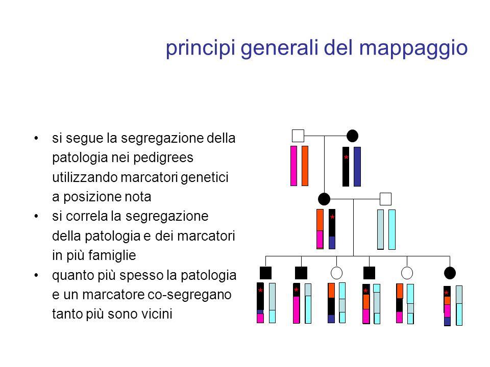 principi generali del mappaggio si segue la segregazione della patologia nei pedigrees utilizzando marcatori genetici a posizione nota si correla la s