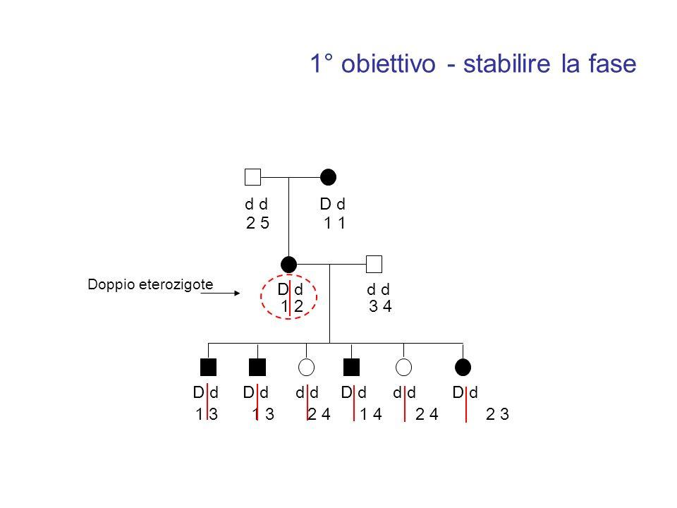 d D d d 2 51 1 23 4 1 3 1 3 2 4 1 4 2 4 2 3 Doppio eterozigote 1° obiettivo - stabilire la fase