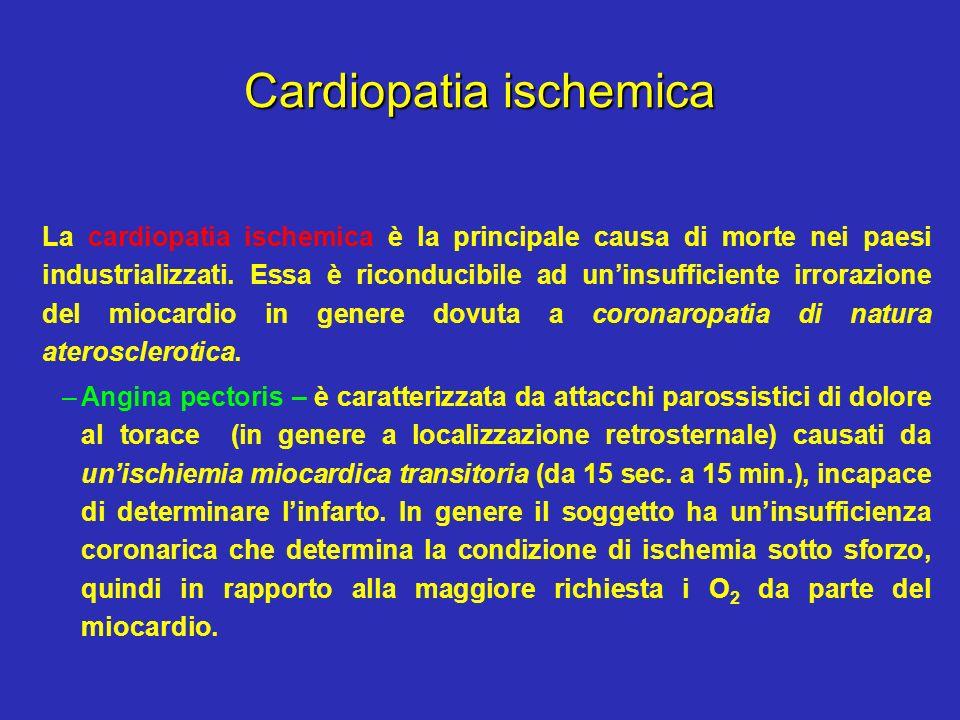 Cardiopatia ischemica La cardiopatia ischemica è la principale causa di morte nei paesi industrializzati. Essa è riconducibile ad uninsufficiente irro