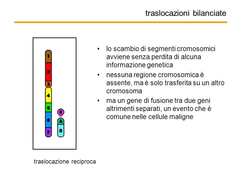 traslocazioni bilanciate lo scambio di segmenti cromosomici avviene senza perdita di alcuna informazione genetica nessuna regione cromosomica è assent