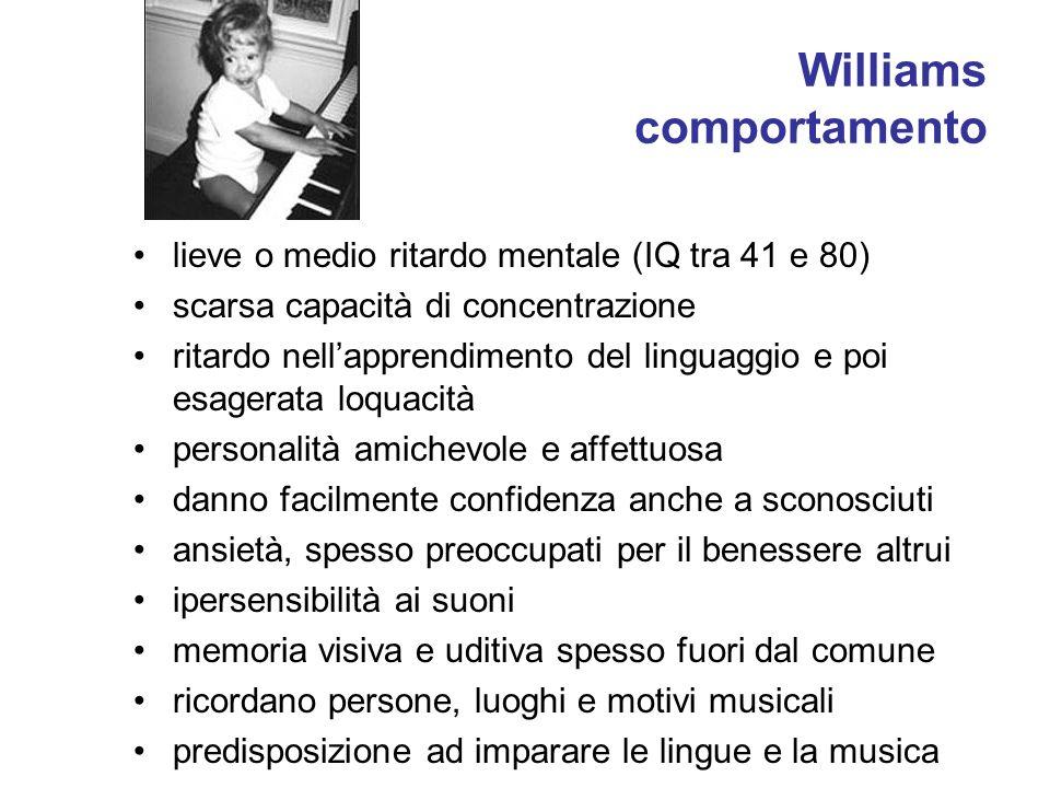 Williams comportamento lieve o medio ritardo mentale (IQ tra 41 e 80) scarsa capacità di concentrazione ritardo nellapprendimento del linguaggio e poi