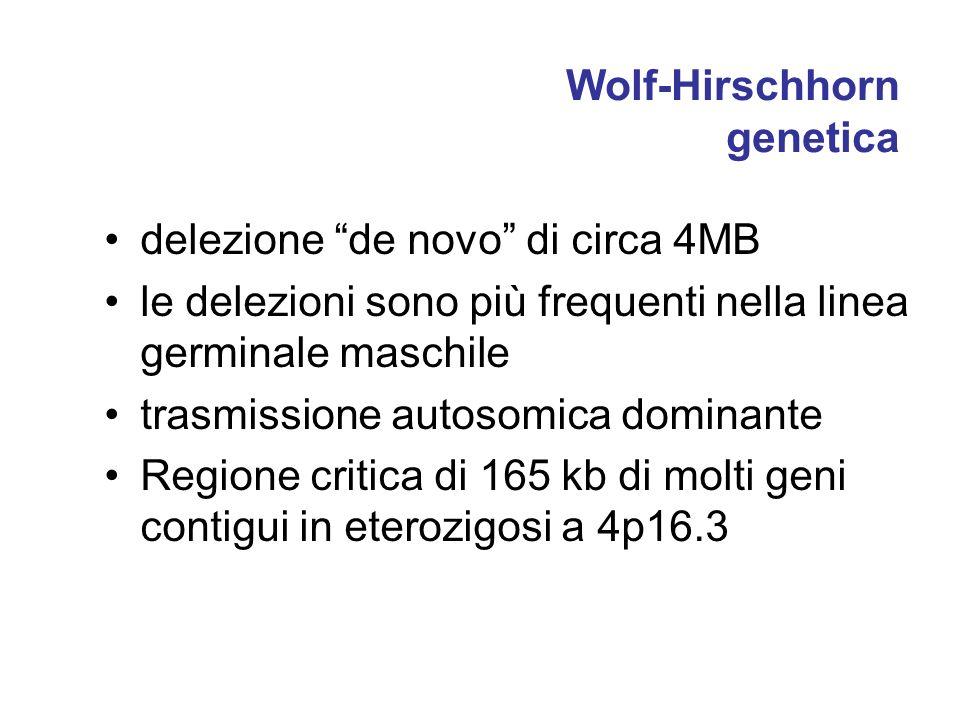 Wolf-Hirschhorn genetica delezione de novo di circa 4MB le delezioni sono più frequenti nella linea germinale maschile trasmissione autosomica dominan