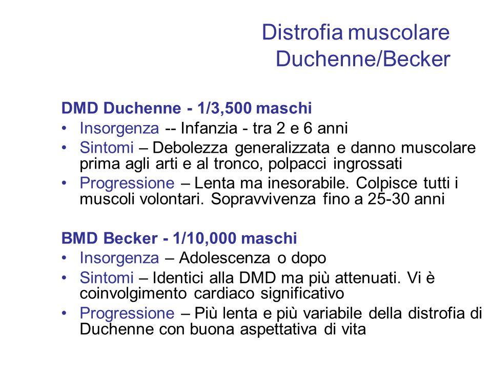 Distrofia muscolare Duchenne/Becker DMD Duchenne - 1/3,500 maschi Insorgenza -- Infanzia - tra 2 e 6 anni Sintomi – Debolezza generalizzata e danno mu