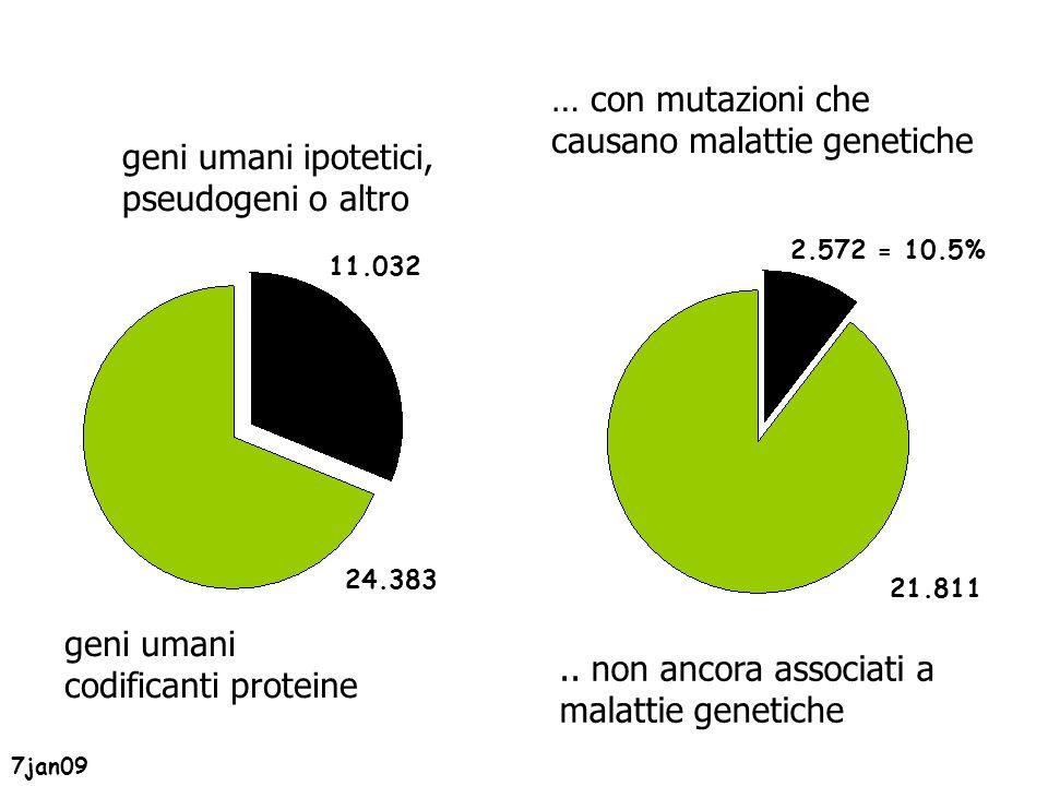 geni umani codificanti proteine … con mutazioni che causano malattie genetiche 7jan09 24.383 2.572 = 10.5% geni umani ipotetici, pseudogeni o altro 11