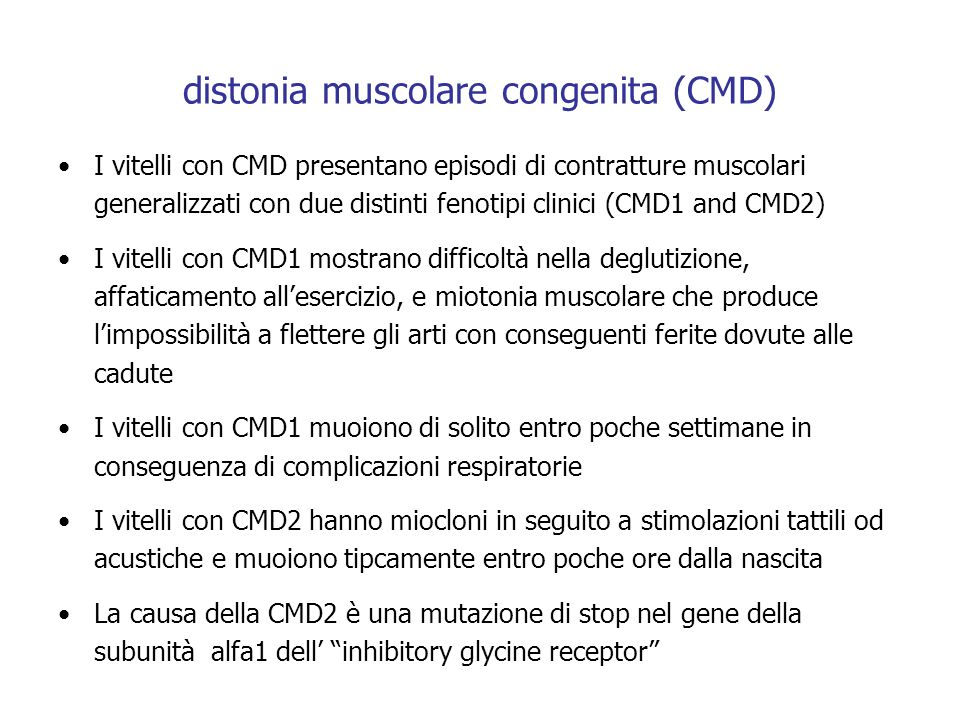 distonia muscolare congenita (CMD) I vitelli con CMD presentano episodi di contratture muscolari generalizzati con due distinti fenotipi clinici (CMD1