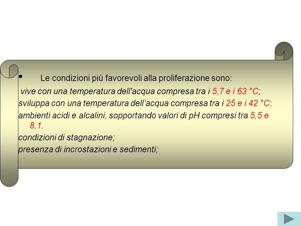 Le condizioni più favorevoli alla proliferazione sono: vive con una temperatura dell'acqua compresa tra i 5,7 e i 63 °C; sviluppa con una temperatura