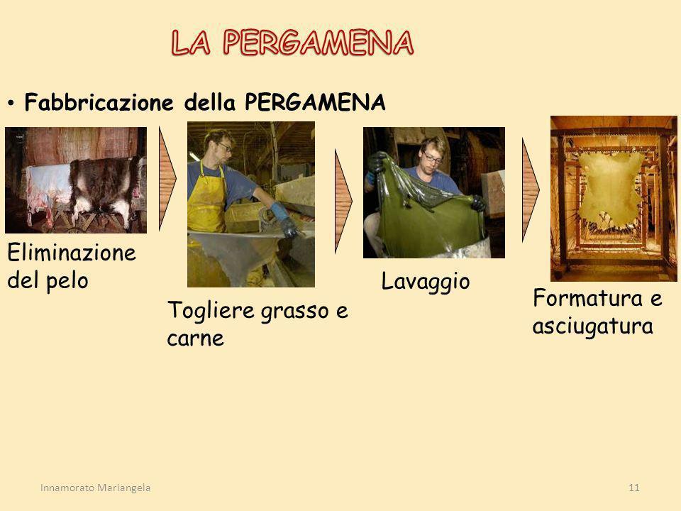 Innamorato Mariangela11 Fabbricazione della PERGAMENA Eliminazione del pelo Togliere grasso e carne Lavaggio Formatura e asciugatura