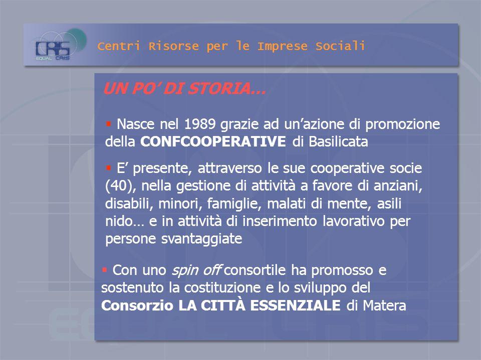 Centri Risorse per le Imprese Sociali LA GESTIONE DI SERVIZI SOCIO ASSISTENZIALI E DI INSERIMENTO LAVORATIVO IL CONSORZIO COOPERAZIONE E SOLIDARIETÀ