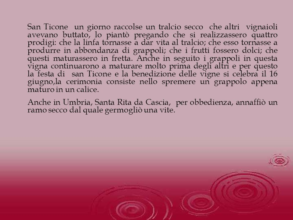 San Ticone un giorno raccolse un tralcio secco che altri vignaioli avevano buttato, lo piantò pregando che si realizzassero quattro prodigi: che la li