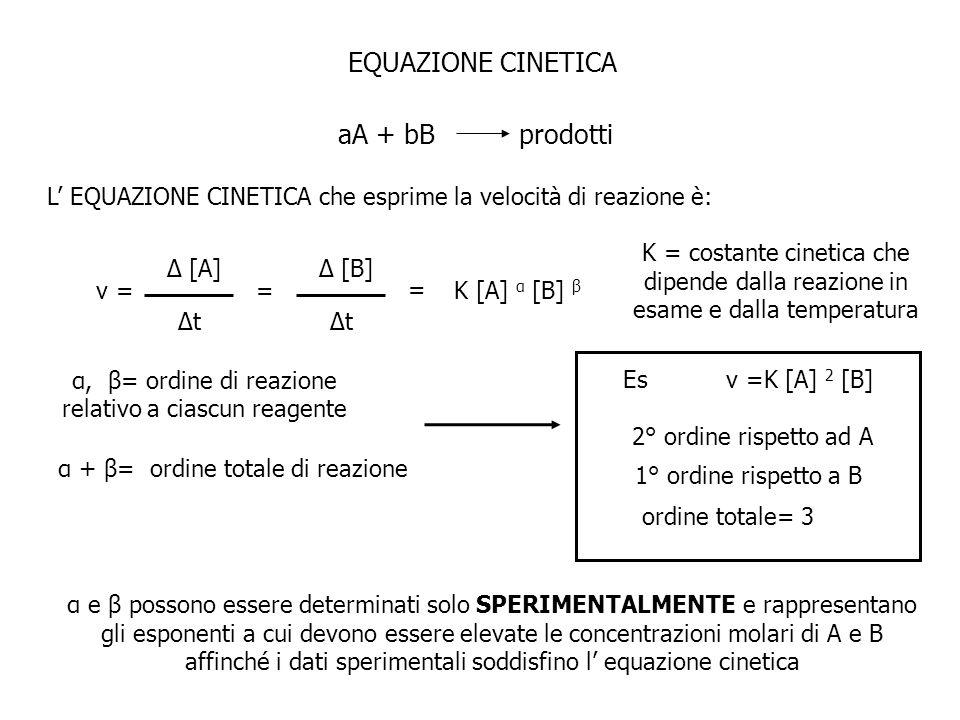 EQUAZIONE CINETICA aA + bBprodotti L EQUAZIONE CINETICA che esprime la velocità di reazione è: v = Δ [A] Δt = Δ [B] Δt = K [A] α [B] β K = costante ci