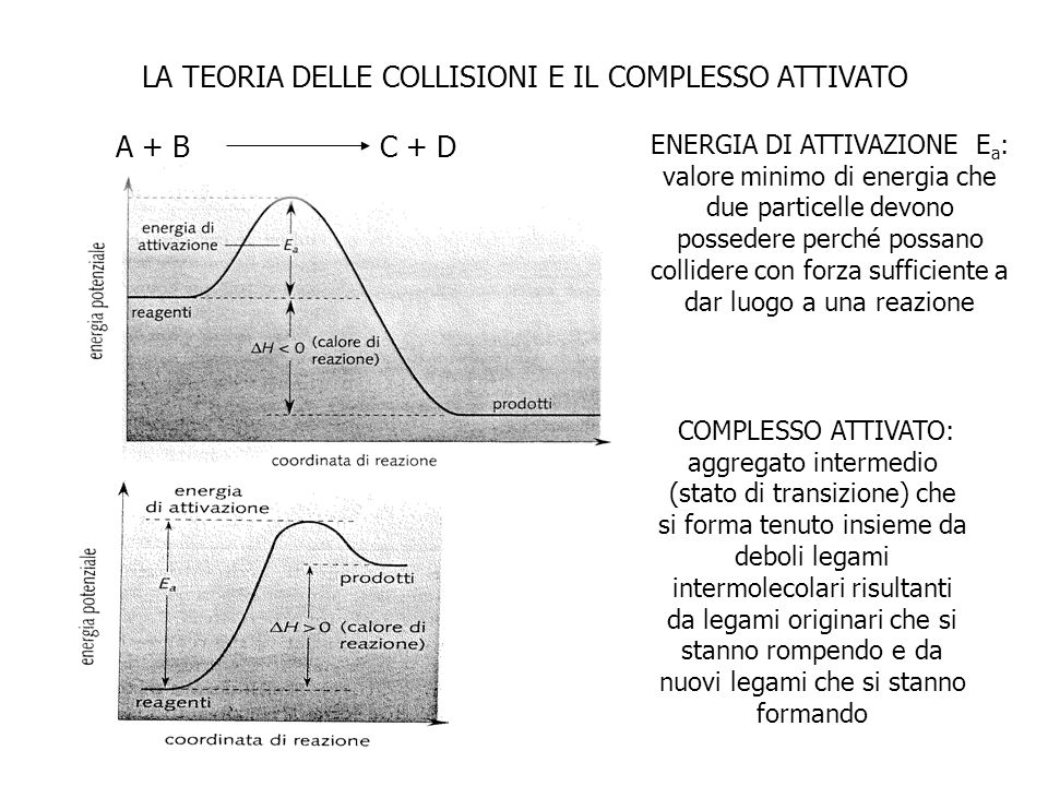 ENERGIA DI ATTIVAZIONE E a : valore minimo di energia che due particelle devono possedere perché possano collidere con forza sufficiente a dar luogo a