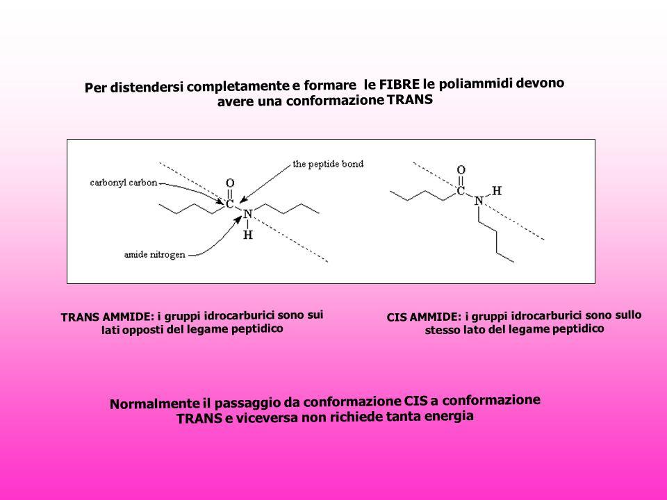 TRANS AMMIDE: i gruppi idrocarburici sono sui lati opposti del legame peptidico CIS AMMIDE: i gruppi idrocarburici sono sullo stesso lato del legame peptidico Normalmente il passaggio da conformazione CIS a conformazione TRANS e viceversa non richiede tanta energia Per distendersi completamente e formare le FIBRE le poliammidi devono avere una conformazione TRANS