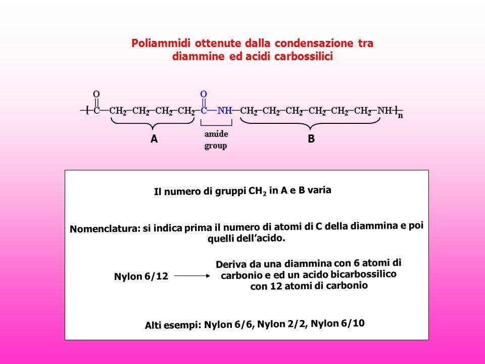 Poliammidi ottenute dalla condensazione tra diammine ed acidi carbossilici Il numero di gruppi CH 2 in A e B varia AB Nomenclatura: si indica prima il numero di atomi di C della diammina e poi quelli dellacido.