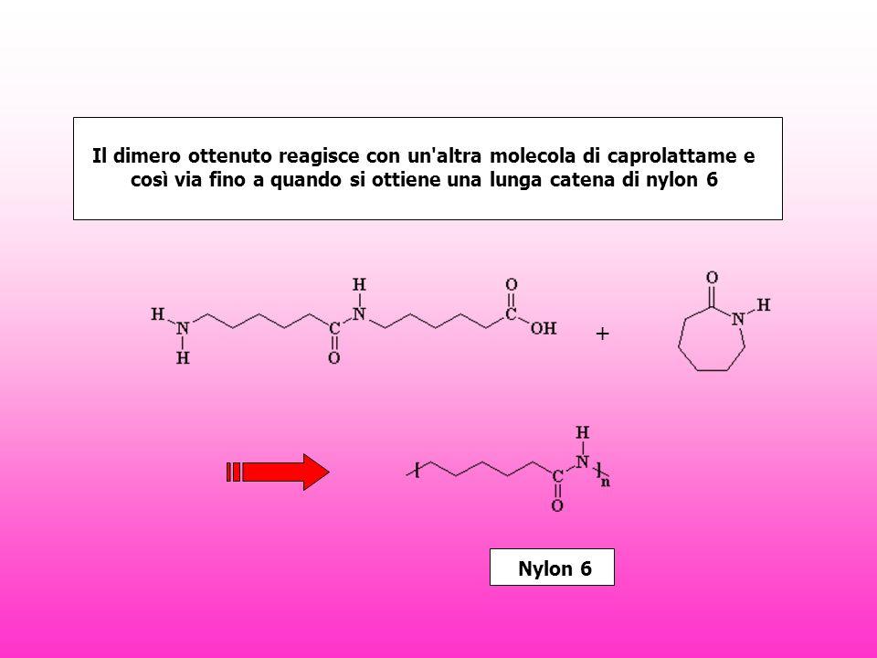 + Il dimero ottenuto reagisce con un altra molecola di caprolattame e così via fino a quando si ottiene una lunga catena di nylon 6 Nylon 6