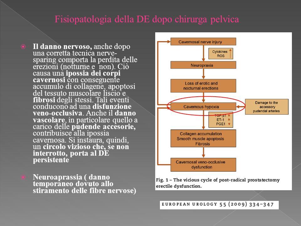 Il danno nervoso, anche dopo una corretta tecnica nerve- sparing comporta la perdita delle erezioni (notturne e non).