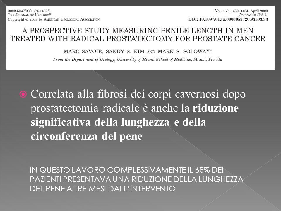 Correlata alla fibrosi dei corpi cavernosi dopo prostatectomia radicale è anche la riduzione significativa della lunghezza e della circonferenza del pene IN QUESTO LAVORO COMPLESSIVAMENTE IL 68% DEI PAZIENTI PRESENTAVA UNA RIDUZIONE DELLA LUNGHEZZA DEL PENE A TRE MESI DALLINTERVENTO