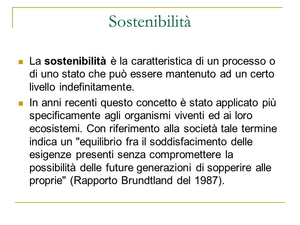 Sostenibilità La sostenibilità è la caratteristica di un processo o di uno stato che può essere mantenuto ad un certo livello indefinitamente. In anni