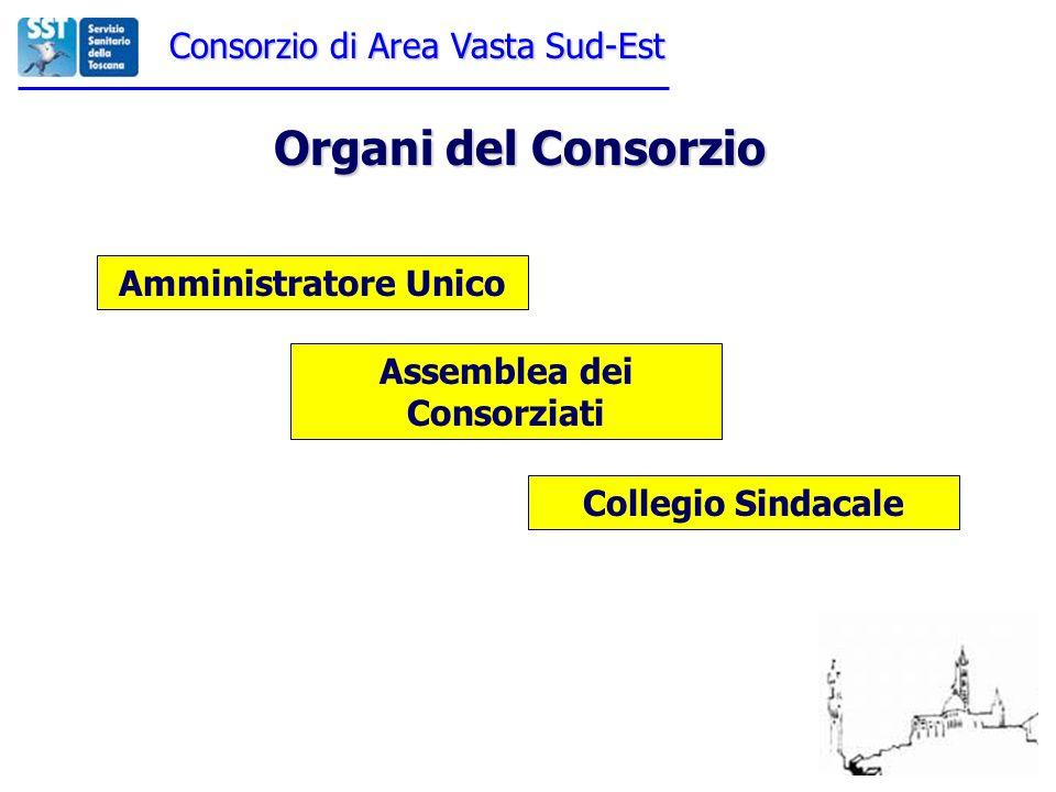 Consorzio di Area Vasta Sud-Est Organi del Consorzio Amministratore Unico Assemblea dei Consorziati Collegio Sindacale
