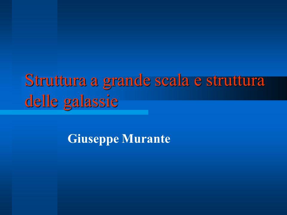 Struttura a grande scala e struttura delle galassie Giuseppe Murante