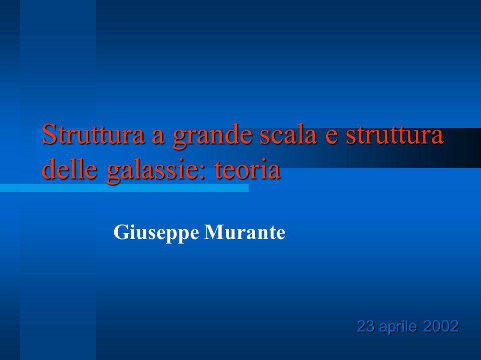 Struttura a grande scala e struttura delle galassie: teoria Giuseppe Murante 23 aprile 2002