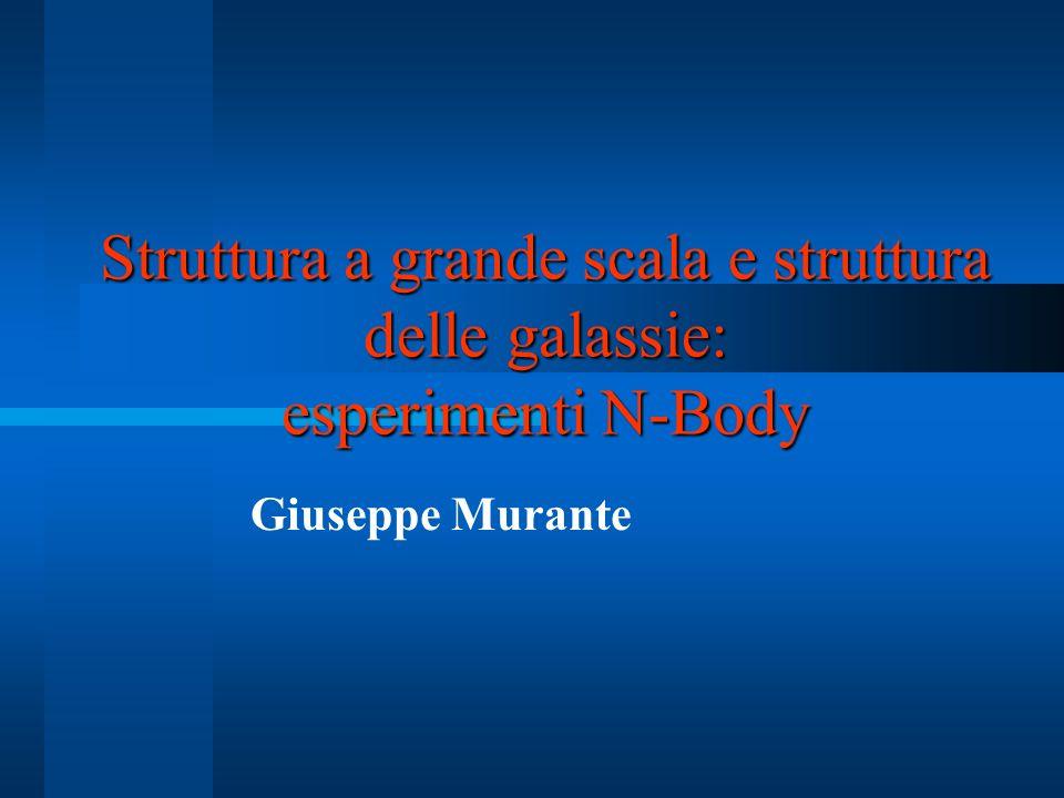 Struttura a grande scala e struttura delle galassie: esperimenti N-Body Giuseppe Murante