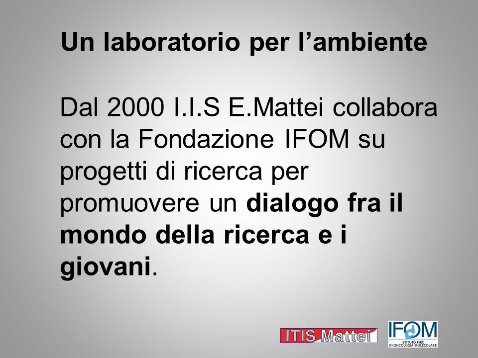 Un laboratorio per lambiente Dal 2000 I.I.S E.Mattei collabora con la Fondazione IFOM su progetti di ricerca per promuovere un dialogo fra il mondo de
