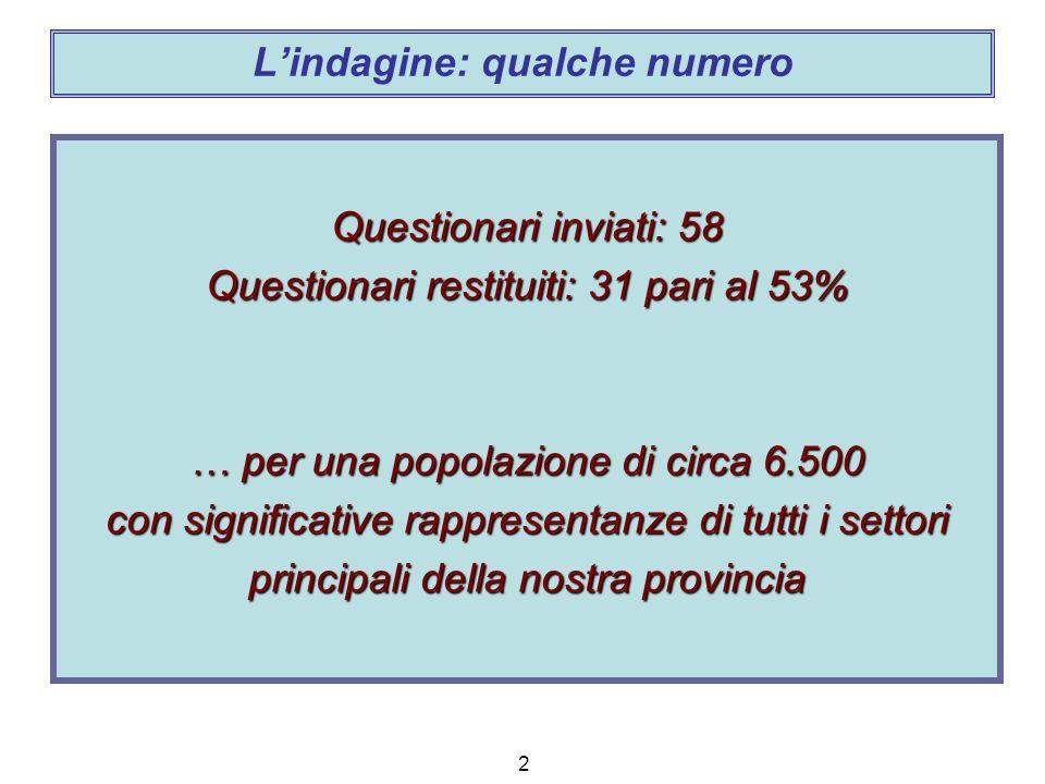 2 Lindagine: qualche numero Questionari inviati: 58 Questionari restituiti: 31 pari al 53% … per una popolazione di circa 6.500 con significative rappresentanze di tutti i settori principali della nostra provincia