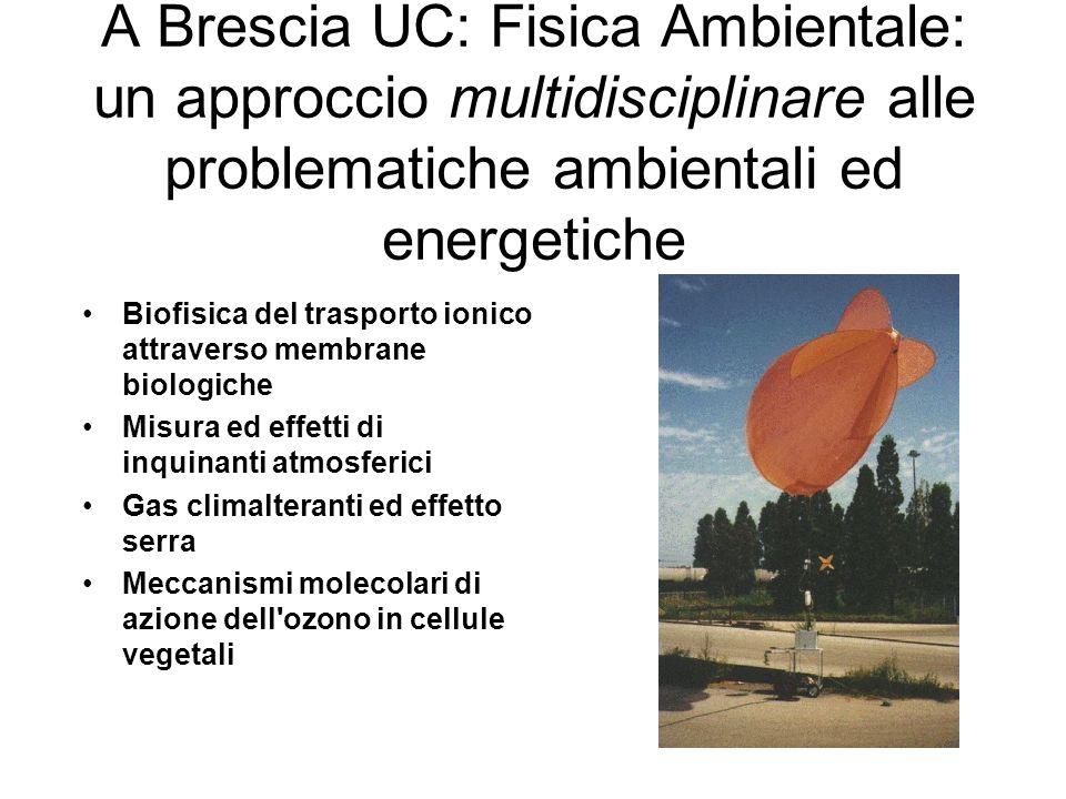 A Brescia UC: Fisica Ambientale: un approccio multidisciplinare alle problematiche ambientali ed energetiche Biofisica del trasporto ionico attraverso