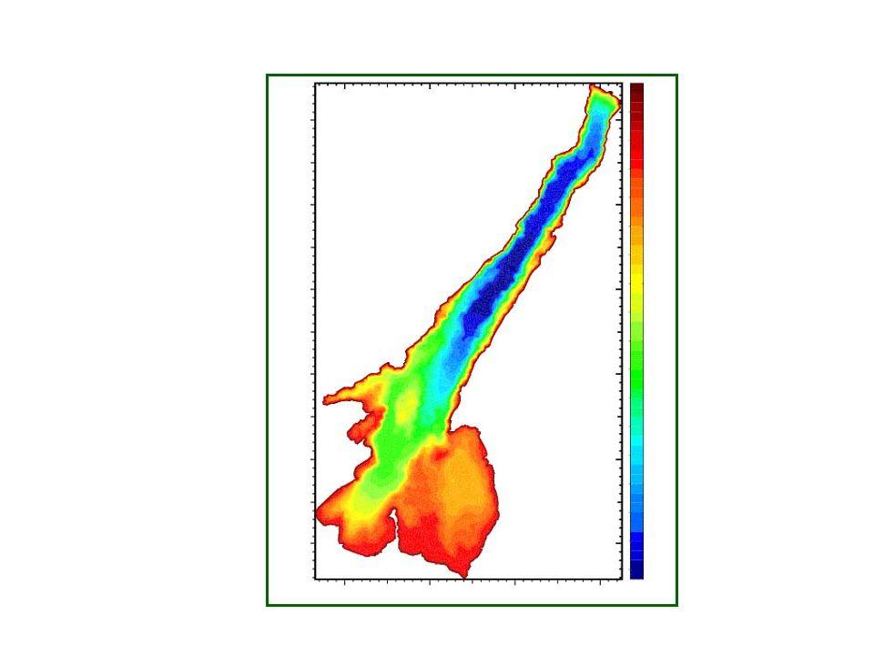 La griglia di calcolo 3800 elementi in orizzontale per 36 strati lungo la verticale.