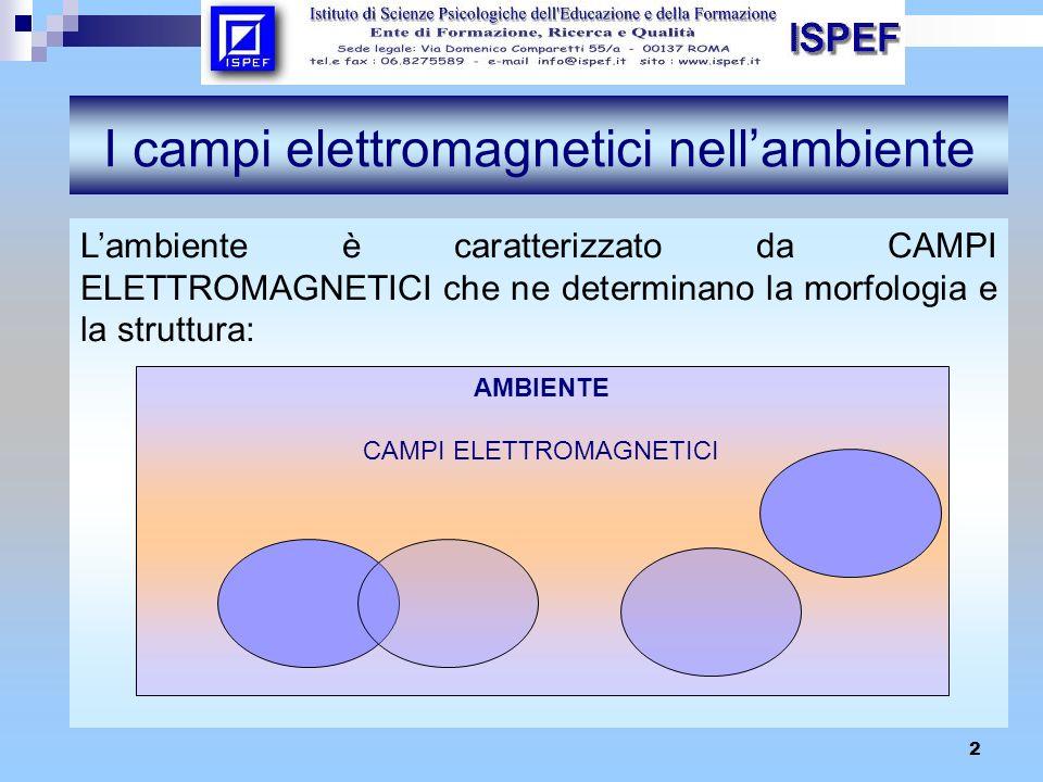 2 I campi elettromagnetici nellambiente Lambiente è caratterizzato da CAMPI ELETTROMAGNETICI che ne determinano la morfologia e la struttura: AMBIENTE