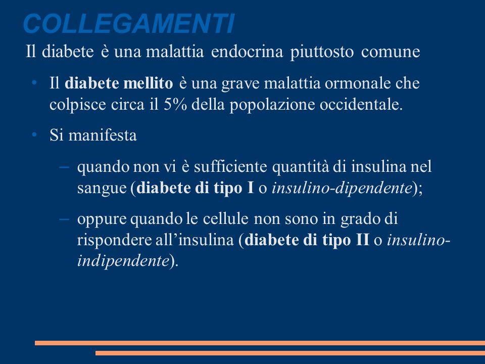 COLLEGAMENTI Il diabete è una malattia endocrina piuttosto comune Il diabete mellito è una grave malattia ormonale che colpisce circa il 5% della popolazione occidentale.