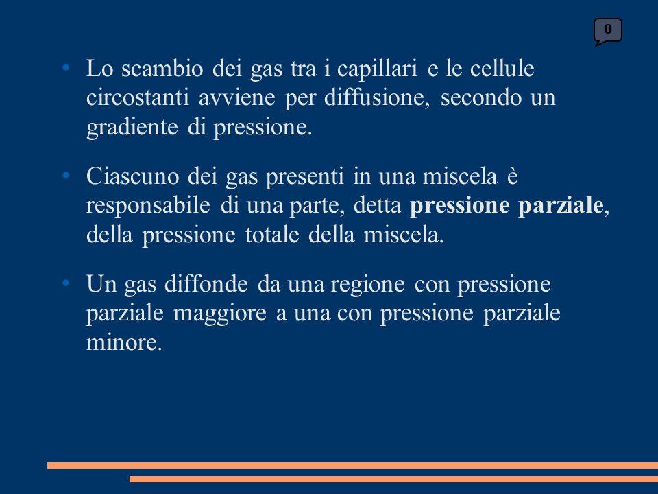 Lo scambio dei gas tra i capillari e le cellule circostanti avviene per diffusione, secondo un gradiente di pressione.