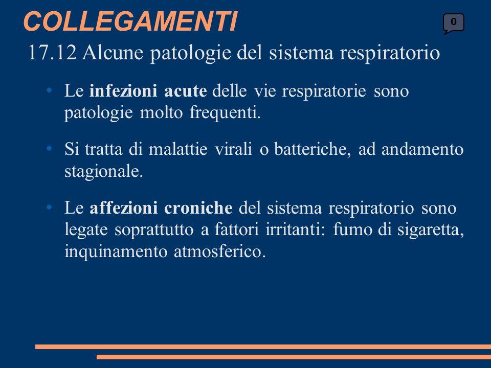 COLLEGAMENTI 17.12 Alcune patologie del sistema respiratorio Le infezioni acute delle vie respiratorie sono patologie molto frequenti.