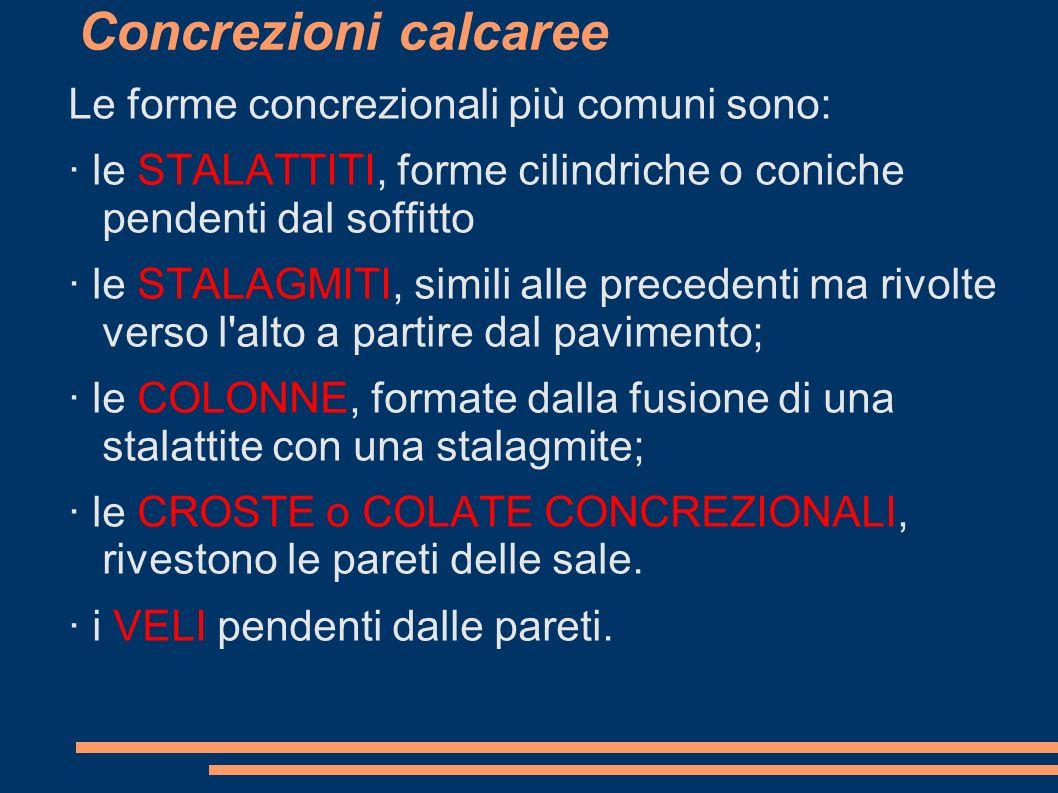 Concrezioni calcaree Le forme concrezionali più comuni sono: · le STALATTITI, forme cilindriche o coniche pendenti dal soffitto · le STALAGMITI, simil