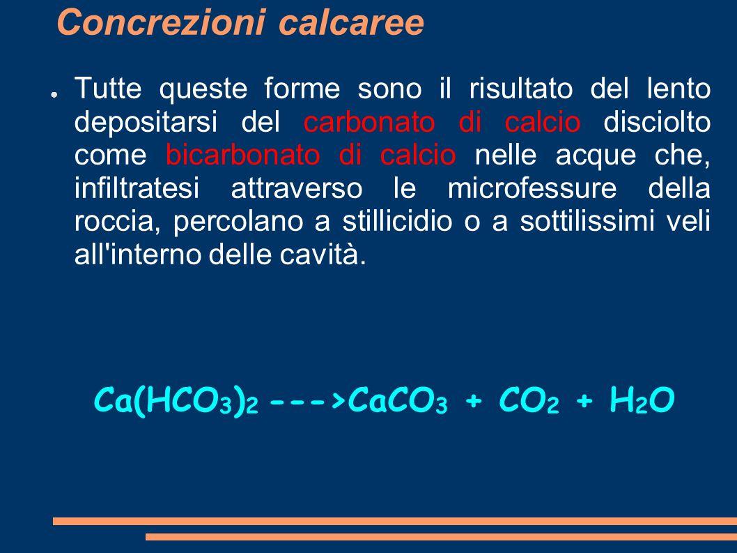 Concrezioni calcaree Tutte queste forme sono il risultato del lento depositarsi del carbonato di calcio disciolto come bicarbonato di calcio nelle acq