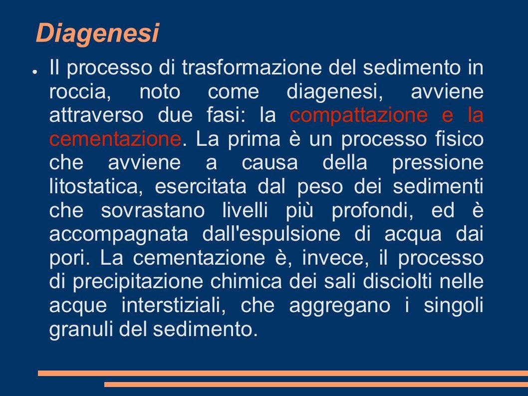 Diagenesi Il processo di trasformazione del sedimento in roccia, noto come diagenesi, avviene attraverso due fasi: la compattazione e la cementazione.