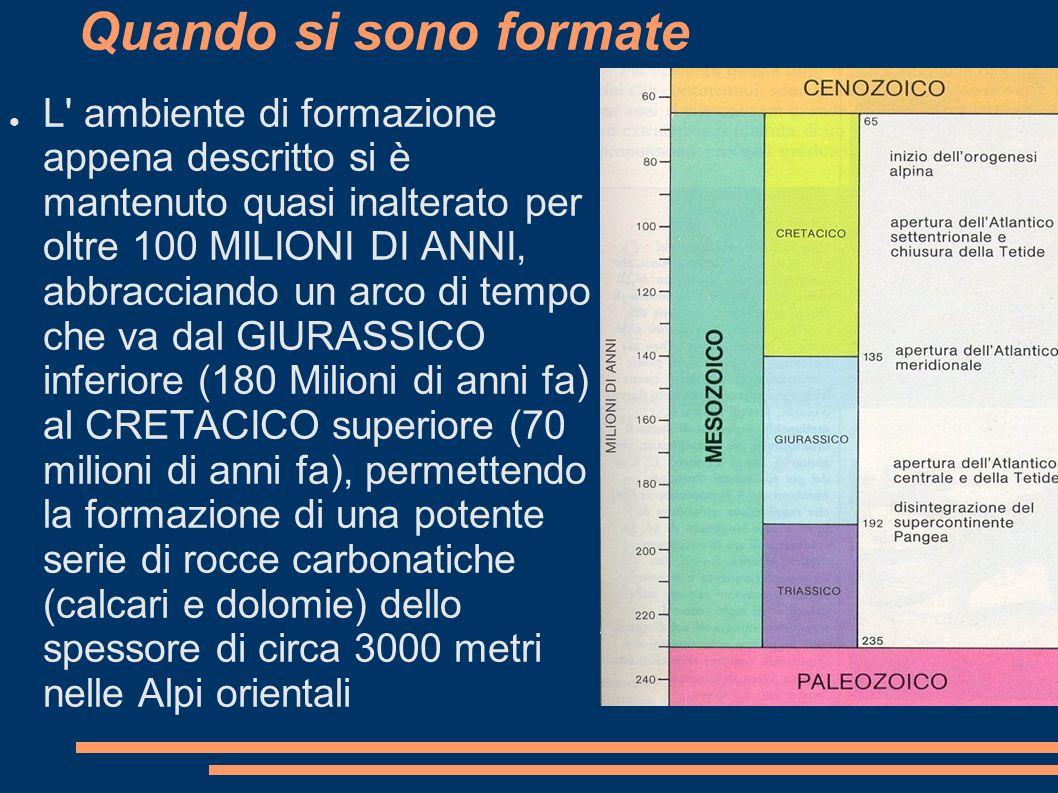 Quando si sono formate L' ambiente di formazione appena descritto si è mantenuto quasi inalterato per oltre 100 MILIONI DI ANNI, abbracciando un arco