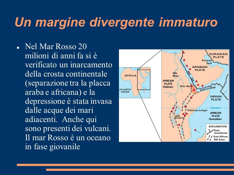 Un margine divergente immaturo Nel Mar Rosso 20 milioni di anni fa si è verificato un inarcamento della crosta continentale (separazione tra la placca