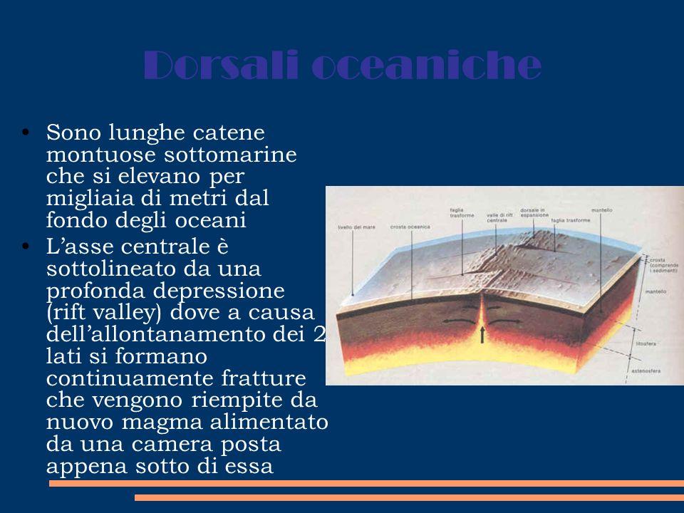 Dorsali oceaniche Sono lunghe catene montuose sottomarine che si elevano per migliaia di metri dal fondo degli oceani Lasse centrale è sottolineato da