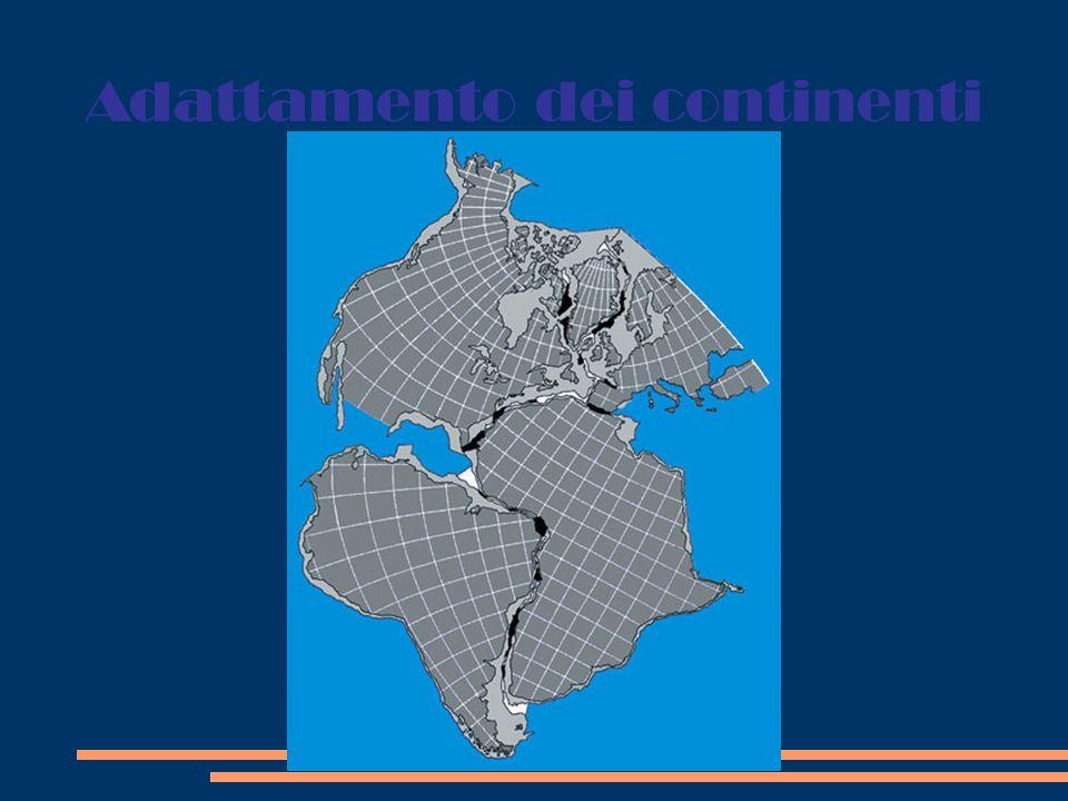 Prove paleontologiche Resti della felce Glossopteris trovati a sud dei continenti mostrano come una volta fossero uniti Testimonianze fossili del rettile terrestre del triassico Lystosaurus Resti fossili del rettile di acqua dolce Mesosaurus Resti fossili del Cynognatus, rettile terrestre del triassico lungo circa 3 m