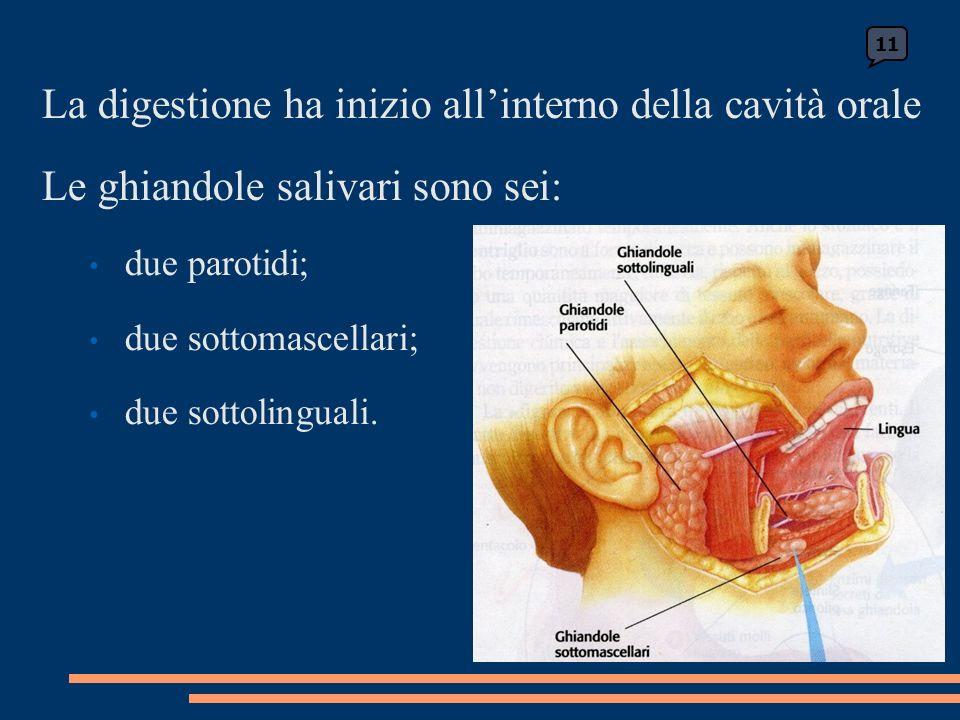 La digestione ha inizio allinterno della cavità orale Le ghiandole salivari sono sei: due parotidi; due sottomascellari; due sottolinguali.