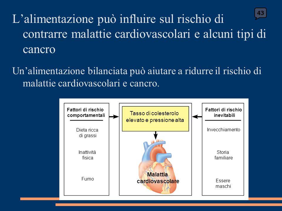 Lalimentazione può influire sul rischio di contrarre malattie cardiovascolari e alcuni tipi di cancro Unalimentazione bilanciata può aiutare a ridurre il rischio di malattie cardiovascolari e cancro.