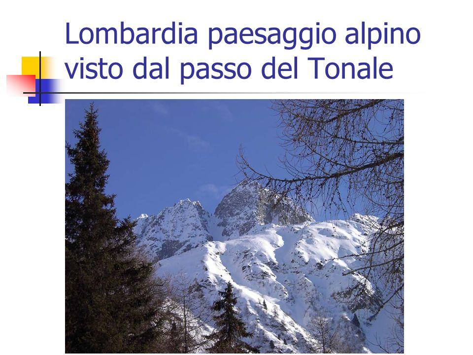 Lombardia paesaggio alpino visto dal passo del Tonale