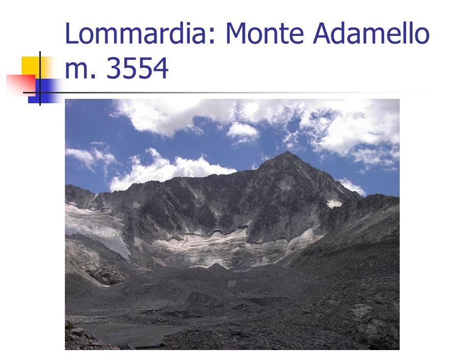 Lommardia: Monte Adamello m. 3554