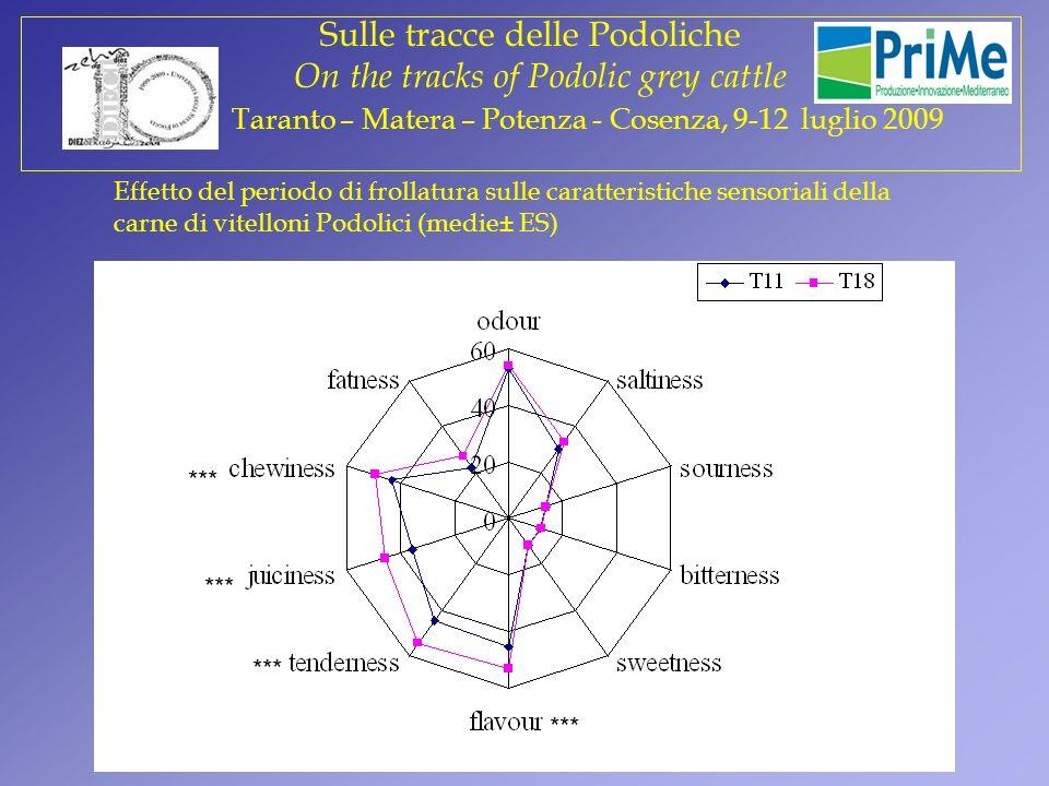 Effetto del periodo di frollatura sulle caratteristiche sensoriali della carne di vitelloni Podolici (medie± ES) *** Prova 2 Sulle tracce delle Podoli